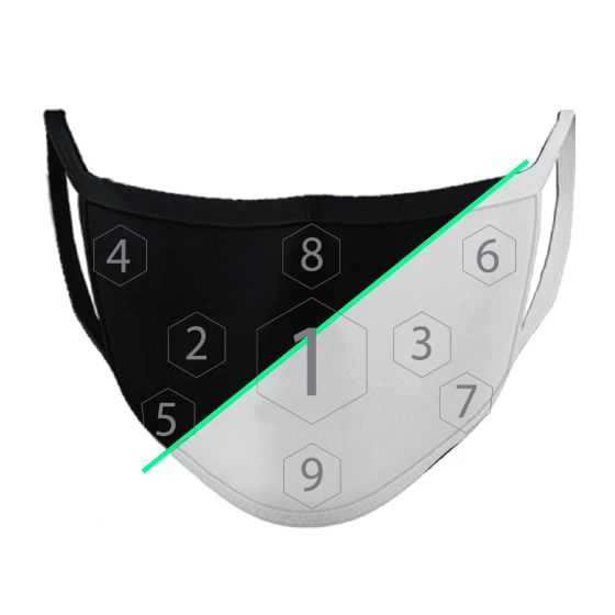 Custom 2-ply Over the Ear Face Mask